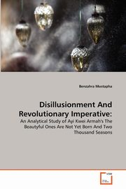 Disillusionment And Revolutionary Imperative, Mustapha Benzahra